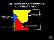 Cutthroat distribution map
