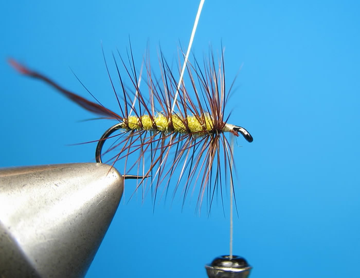 Tie off the hackle and wrap the wire rib...