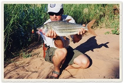 tigerfish
